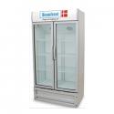 Scanfrost Bottle Cooler– SFUC 700